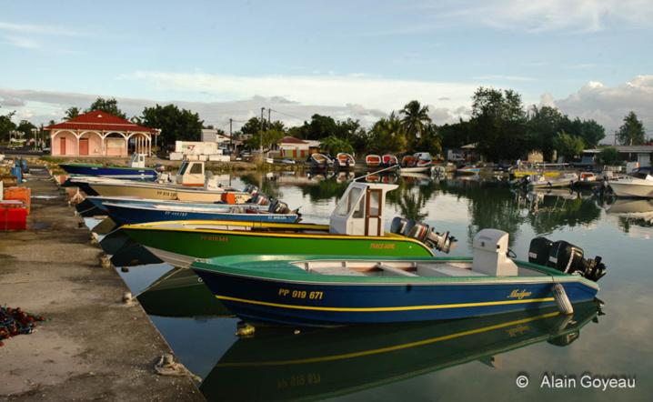 bateau de peche guadeloupe
