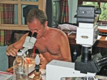 Horia Galea, Docteur en Biologie, observe  une colonie d'hydraire au binoculaire.