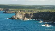 Les Falaises de la Grande Vigie à l'extrême nord de la Guadeloupe.