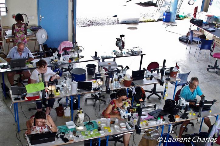 Vue d'ensemble du laboratoire.
