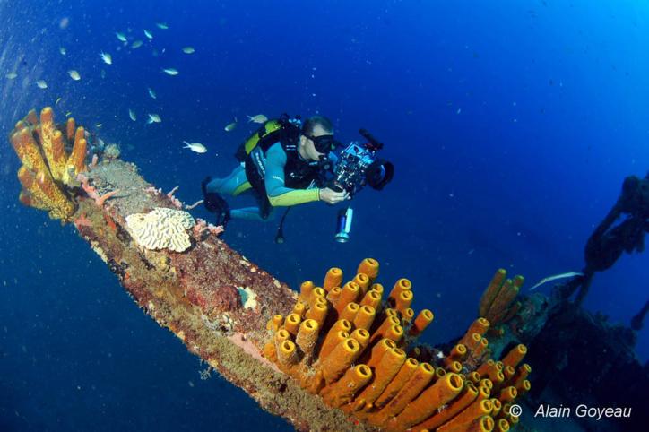 La photographie sous-marine est l'une des activités proposées par eden Plongée en Guadeloupe.