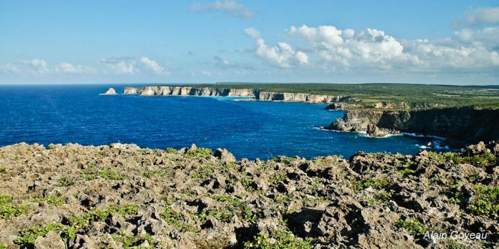 Les falaises de la Grande Vigie en Guadeloupe domine l'Atlantique.