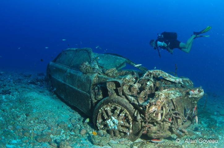 Le plongeur fait une rencontre insolite au pied de la Pointe Montagneir en Guadeloupe.
