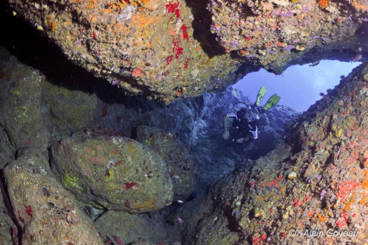 La plongée à la Pointe Montagnier commence par une descente parmi les éboulis rocheux. Plongée Guadeloupe.