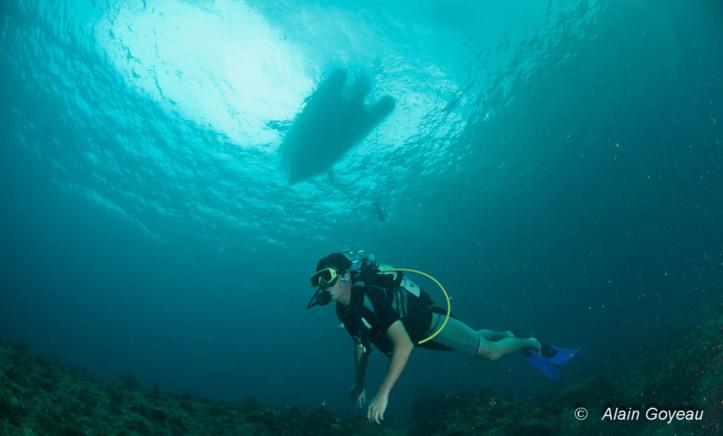 Orientation en plongée sous-marine. N'oubliez pas de chercher l'ombre du bateau.