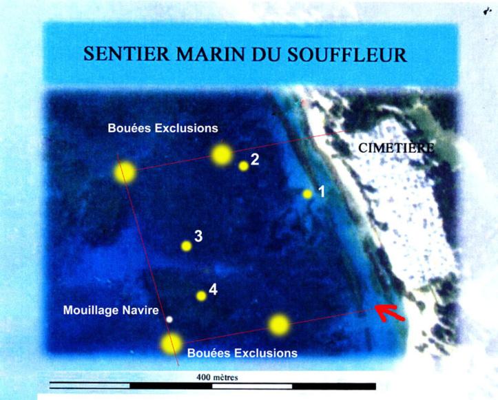Randonnée subaquatique sur le sentier sous-marin de Port Louis.