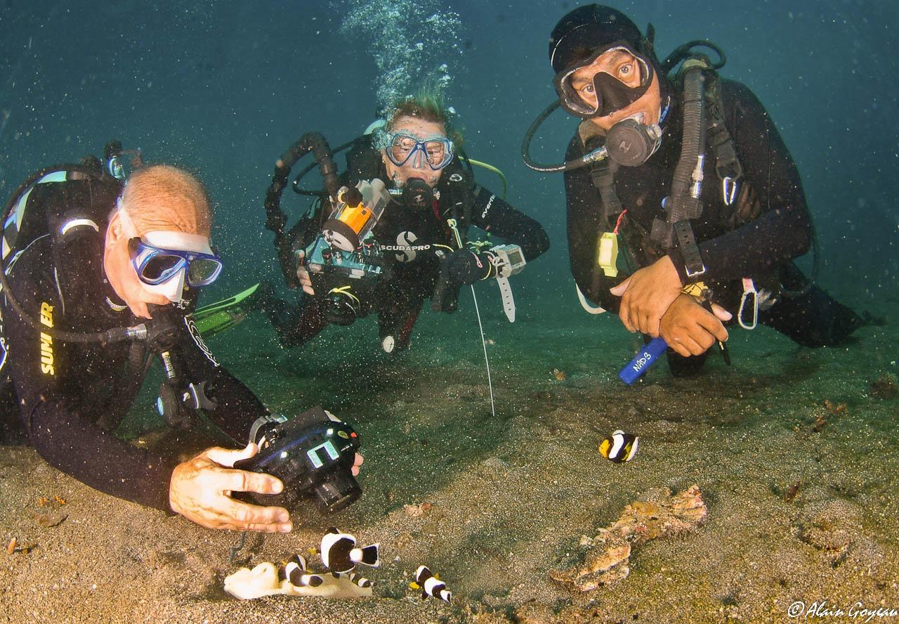 Plongée en Indonésie sous l'oeil attentif d'un Dive Master Padi.