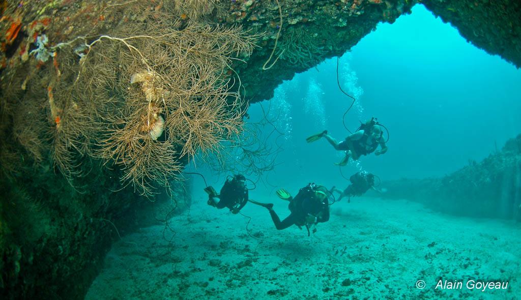 Les Grottes de Port-Louis en Guadeloupe à découvrir absolument.