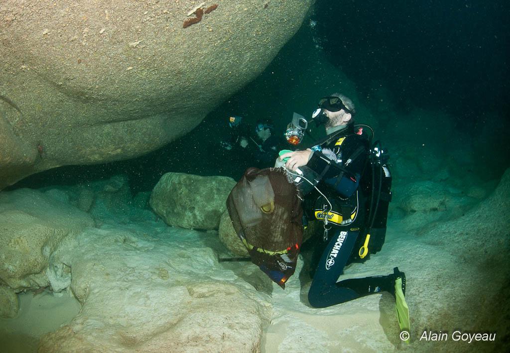 Les grottes obscures de Port Louis n'ont pas échappé à l'inventaire