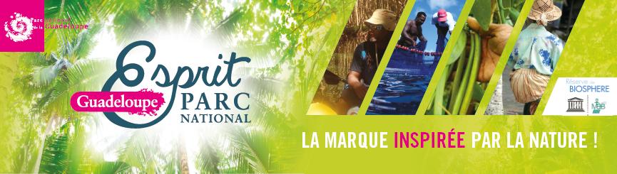 """La plongée en Guadeloupe """"Esprit Parc National""""."""