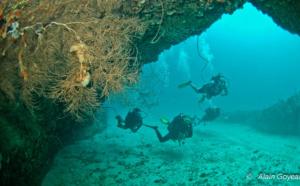 Eden plongée, présentation de nos spots de plongée