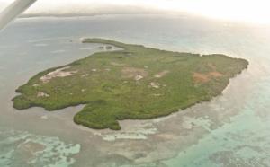 Les stages de formation en biologie subaquatique en Guadeloupe.