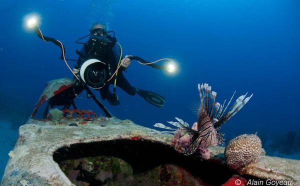Formation photo sous-marine numérique en Guadeloupe.