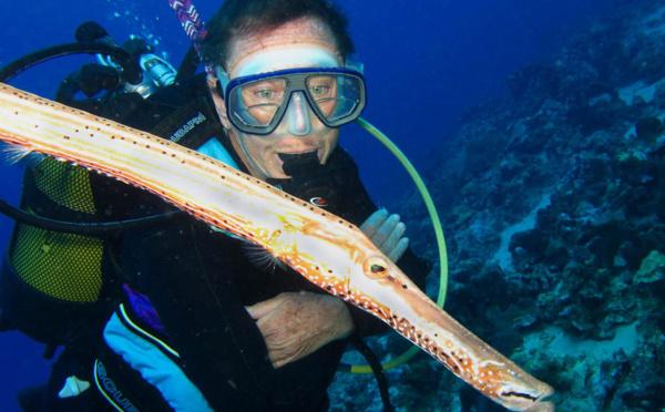 Formations de plongée en Guadeloupe expliquées aux débutants.