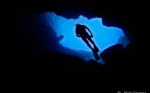 Quels sites peut-on faire en Guadeloupe en fonction de son niveau de plongée ?